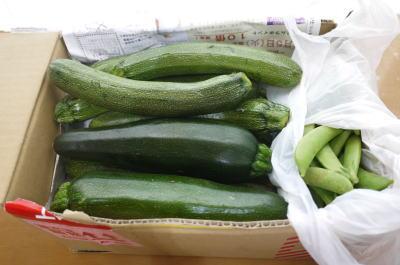お野菜,画像